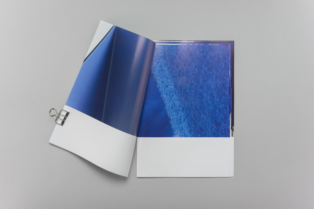bluebook3.jpg