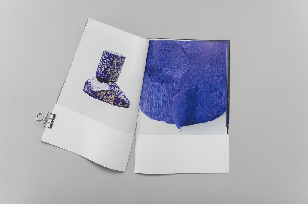 bluebook5.jpg