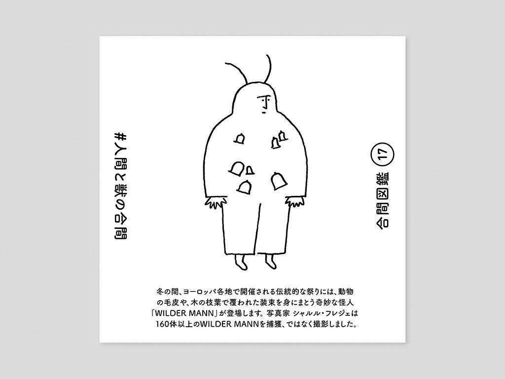 aiiima-zukan-7.jpg